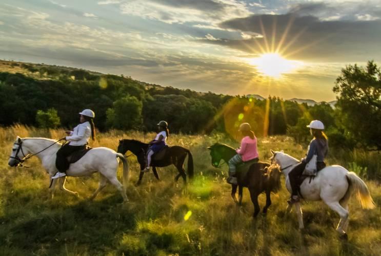 Horse Trail Safaris